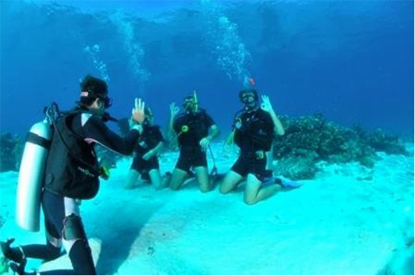 Please Click Here If You Are Not Redirected Within A Few Seconds Fr En 262 262 34 79 79 262 262 34 79 79 Booking Abyss Plongee Logo Home The Club Our Partners Our Instructors Diving Activities Dive Packages Padi Training Courses Dive Sites